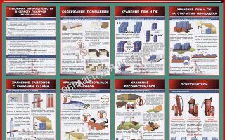 Противопожарная безопасность лесных складов: основные требования