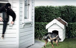 Как защитить свой дом от воров: популярные методы защиты