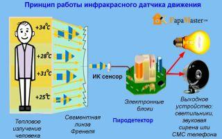 Принцип работы и конструкция звукового датчика движения