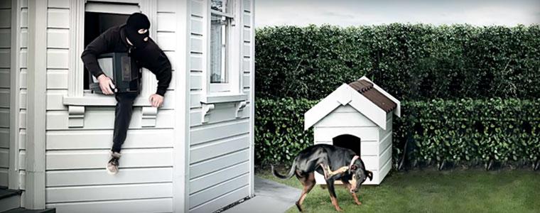 Картинки по запросу Как защитить свой дом от вора?